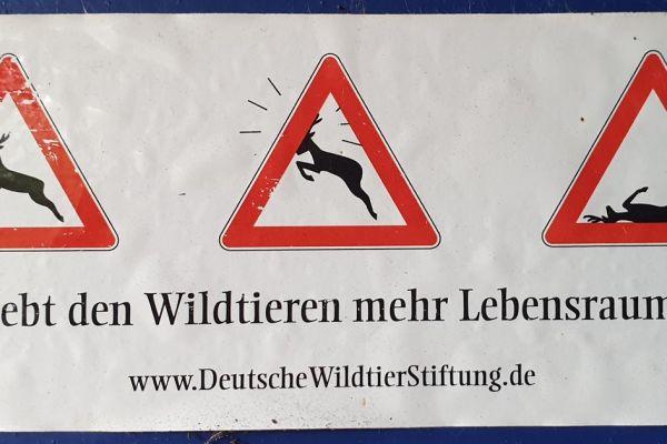190817-04-gebt-den-wildtieren-mehr-lebensraumFB1259B6-3933-5D29-8E41-7946D2DBDE57.jpg